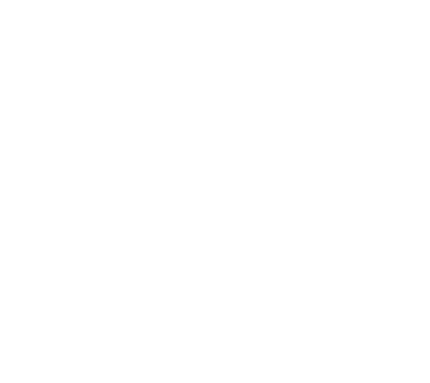 AccentonSkin_Logo
